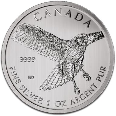 Silver Canadian BIRDS OF PREY
