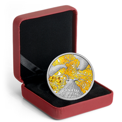 2014 $20 Silver Proof Coin - Maple Canopy (Autumn Allure)